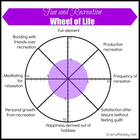 career wheel template 17 best images about medicine wheel on