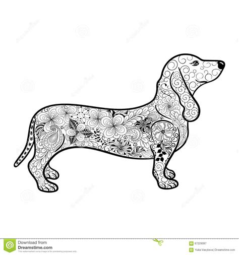 dachshund doodle stock vector image 67229087