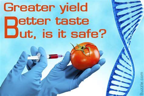 Genetic Engineering genetic engineering in food the jury s still out