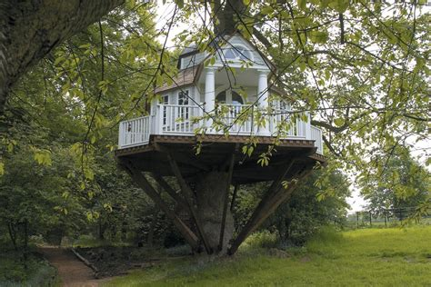 Incredible Houses by 187 Architecture Amazing Tree Houses To Live In