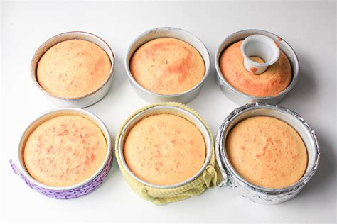 how to bake different cake sizes how to bake a flat cake 5 methods put to the test