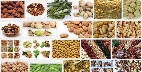 Biji Kelapa Hitam Unik Energi jenis contoh dan macam kacang kacangan dunia tumbuhan