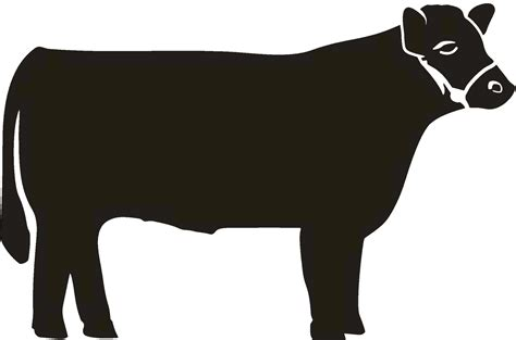 steer clipart steer cliparts