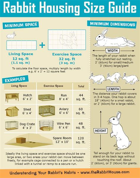 What Size Should A Rabbit Hutch Be best 20 rabbit hutches ideas on