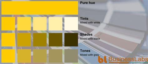 monochromatic color monochromatic color scheme yellow www pixshark com