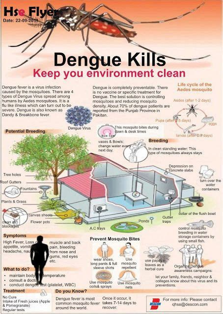 Fever When Detoxing by 31 Best Dengue Images On