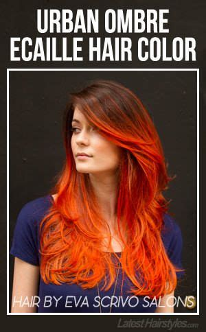 urban hair color pictures 17 best images about ecaille hair color on pinterest
