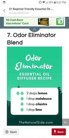 odor eliminator ideas  pinterest eliminate