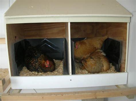 Backyard Chickens Nest Box Size Nesting Box Dimensions Help Backyard Chickens