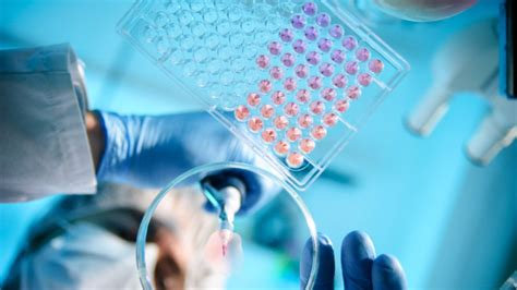 Mba In Laboratory Medicine by Research Funding A Click Away With Crowdfunding