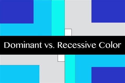 what color are dominant understanding color dominant vs recessive colors