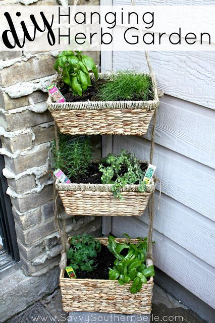 Diy Hanging Herb Garden Herbs Garden Small Spaces And Herbs Small Herb Garden Ideas