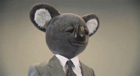 Koala Weird GIF   Koala Weird   Discover & Share GIFs