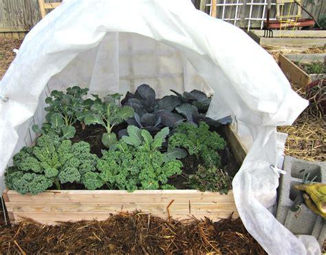 winter vegetable gardening