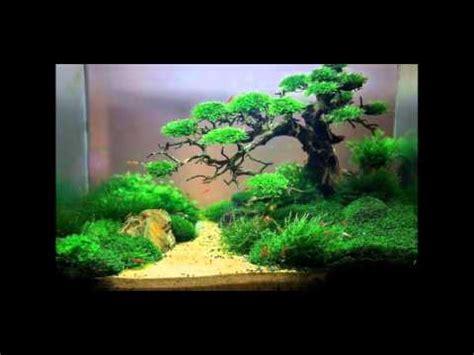 aquarium ideen aquarium ideas aquarium ideen id 233 es aquarium