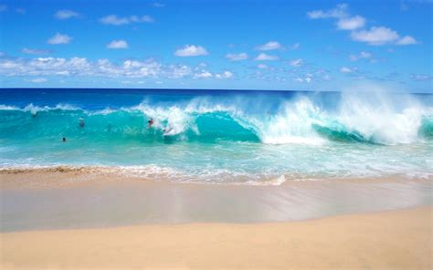on the beach fun on the playful ocean waves wallpaper beach wallpapers