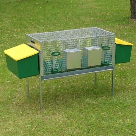 come costruire una gabbia per conigli in legno conigliera 2 fattrici ferranti