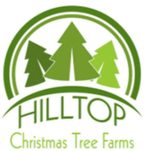 canada based hilltop christmas tree farms first tree of
