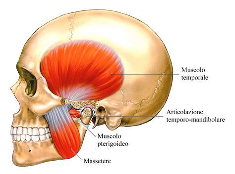 dolori cervicali e mal di testa mal di testa ernia cervicale cefalea emicrania scopri