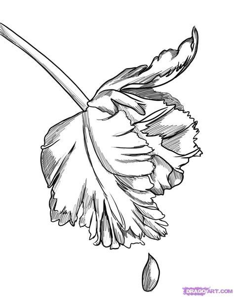 New Drawing Drawings New Moon Fan 9617970 Fanpop