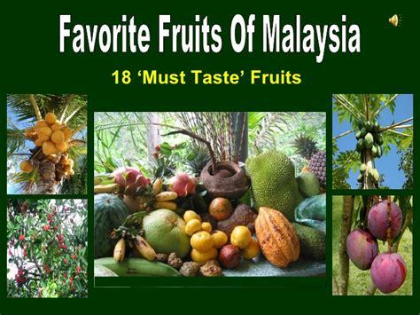 fruit 10 malaysia favorite fruits of malaysia