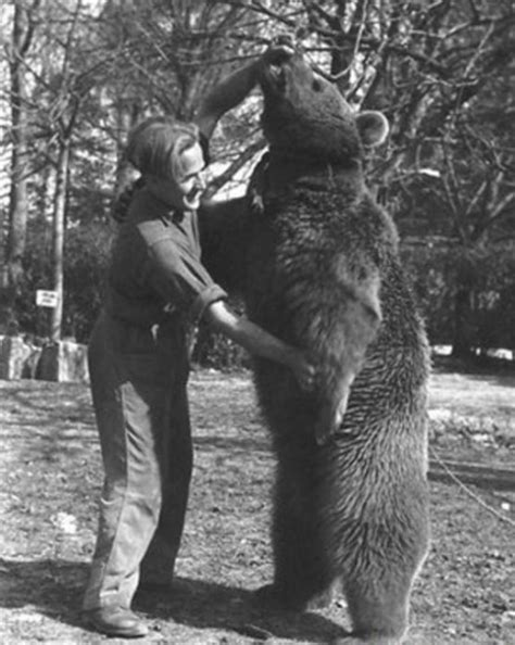 20 Images of Corporal Wojtek, the Polish Bear and Hero of