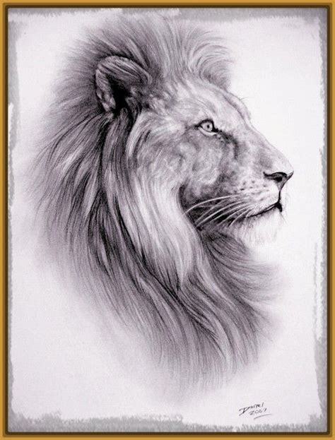 imagenes de los leones del caracas 39 best leones y dragones images on pinterest simple