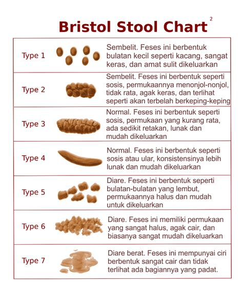 Bristol Stool Scale Explained by Bristol Stool Chart Explanation Pictures To Pin On