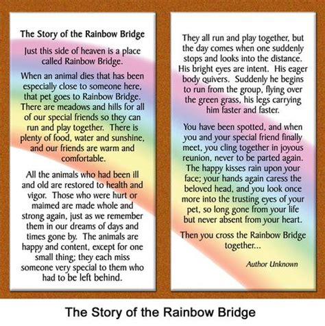 how do i get to rainbow bridge books quot rainbow bridge quot framed pet loss sympathy gift healing