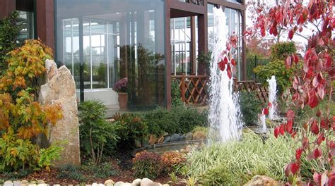 giardino d acqua giardino d acqua forme d acqua