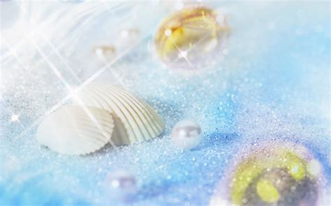 shell wallpaper top clam shell pearl wallpapers wallpapers