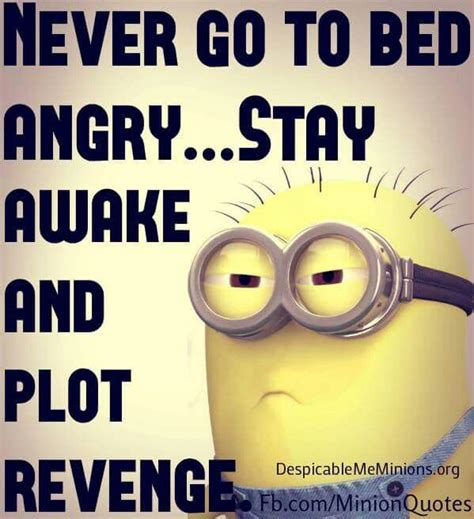 don t go to bed angry minions revenge see my minions pins https www pinterest