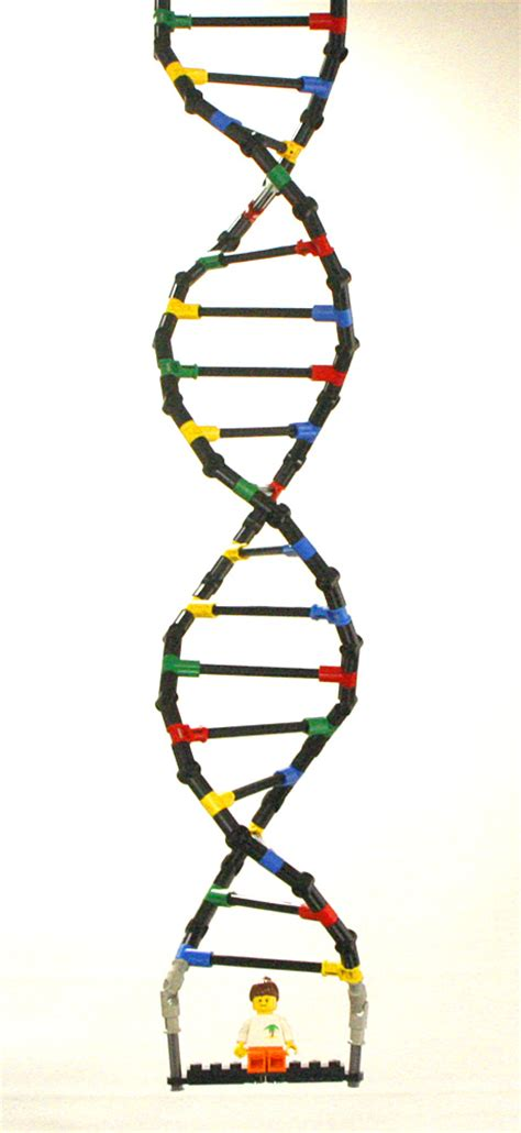 Technic Delicatessen: Lego Technic DNA