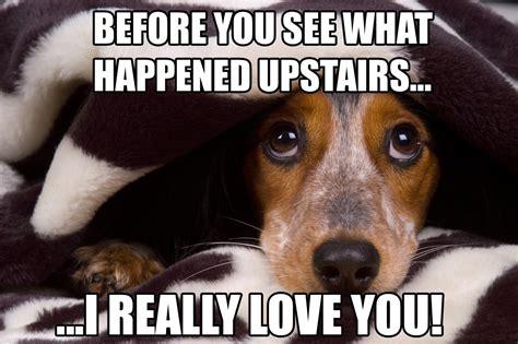 Sad Love Memes - dog house breaking meme the how to dog blog