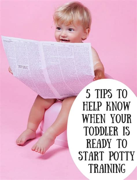 potty your how to potty your who is scared to a children story on how to make potty and easy my books volume 1 books 5 tips to help when your toddler is ready to start
