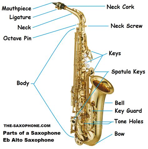 diagram of a saxophone saxophone diagram for search saxophone