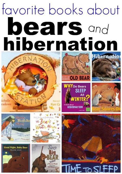 kindergarten activities on hibernation bears and hibernation books for preschool the winter