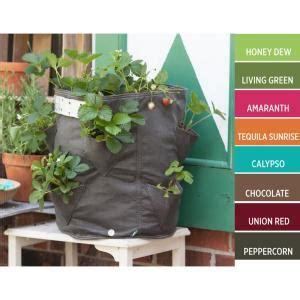 Planter Bag 45 Liter Hitam bloem 9 gal chocolate fabric strawberry planter bag sbp
