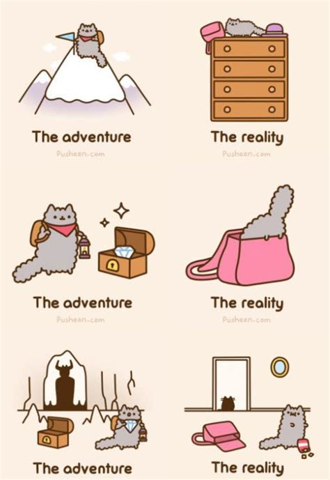 Kaos Anak Pusheen The Cat 71 best images about pusheen on pizza my