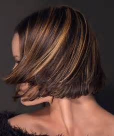 hair with highlights 35 glamorous dark brown hair with highlights creativefan