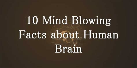 10 Tips On How To Experience Mind Blowing Quickies by 10 Mind Blowing Facts About Human Brain