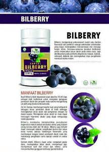 Bilberry Hpai Herbal Kesehatan Mata jual obat herbal mata katarak sms wa 0856 9637 0861 agen pengobatan herbal mata sms wa 0856