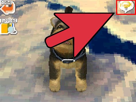 how to make your howl how to teach your nintendog to howl 3 steps with pictures