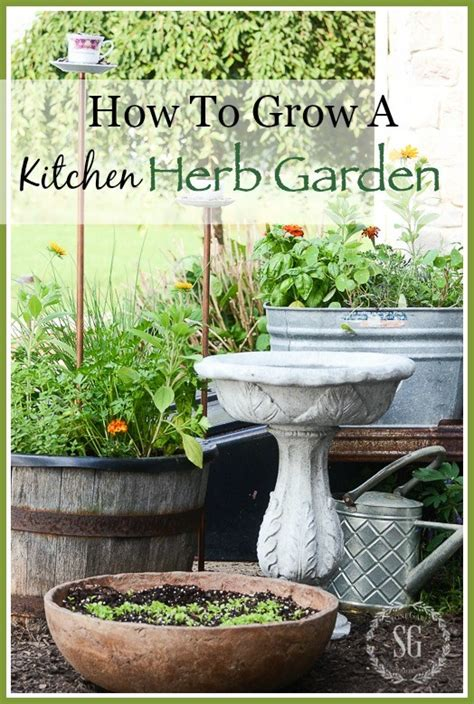 how to grow a herb garden how to grow a kitchen herb garden stonegable