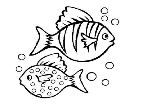 beautiful fish coloring pages beautiful fishes coloring drawing free wallpaper anggela