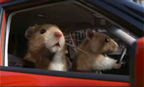 Kia Commercial With Mice Kia Soul Mice Commercial