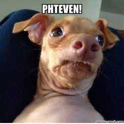 Stephen Dog Meme - phteven