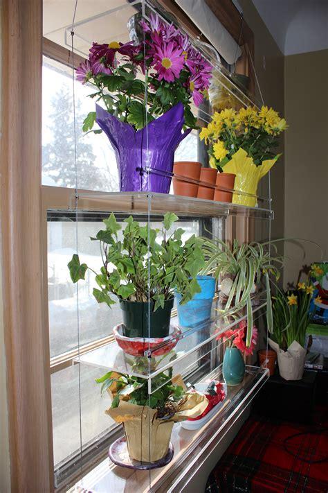 beautiful views hanging indoor window garden review