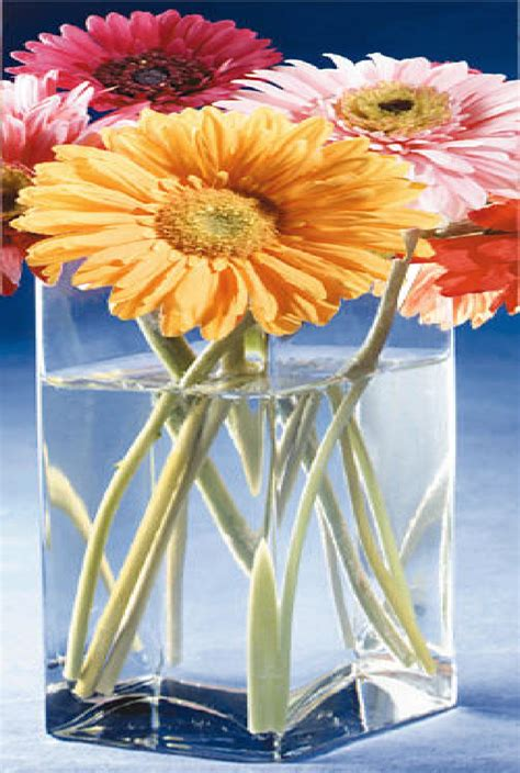 Gel Flower craftwater stays clear floral arranging reuseable gel simulated water 12oz ebay