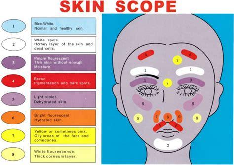 wood l skin analysis wood l skin analyzer buy wood l skin analyzer